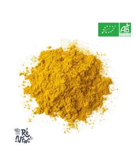 Curry en poudre bio