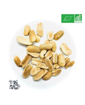 Cacahuètes grillées sans sel bio