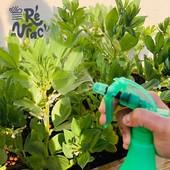 Bon débarras 😁  Le savon noir est un produit naturel 🌱dont les propriétés nettoyantes sont connues depuis l'Antiquité. Utilisé pour l'entretien de la maison, ses vertus antibactériennes et insecticides en font un allié précieux pour le jardinier bio 👩🌾 Pucerons et mildiou, prenez garde !  #iledere #ilederé #savonnoir #ecocert #jardinage #garden #bio #naturel #printemps #été #entretien #maison #produit #vrac #sansemballage #sansplastic #puceron #reenvrac